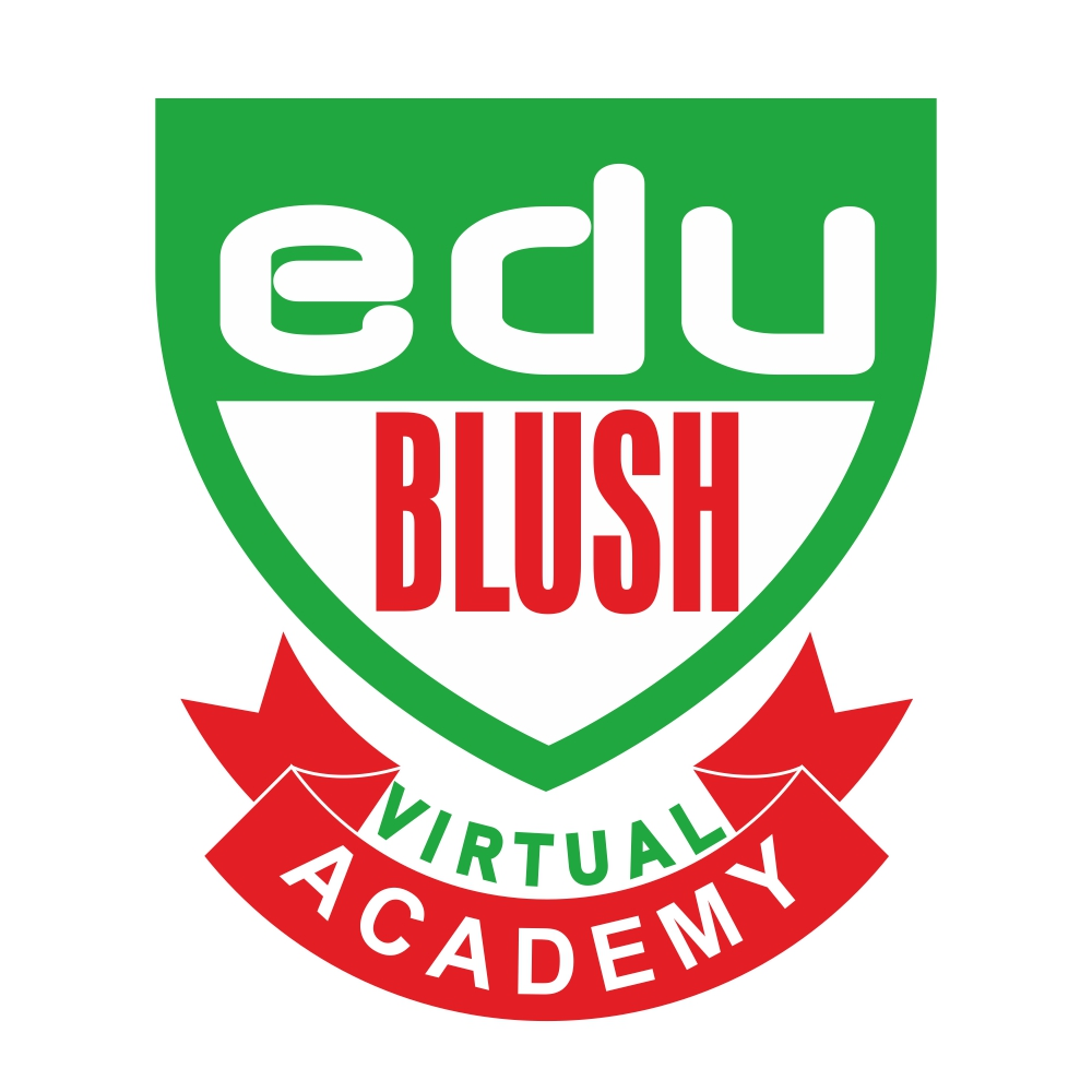 Edublush Virtual Academy